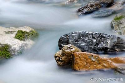 Bach Muotha © Cascadea Fotografie